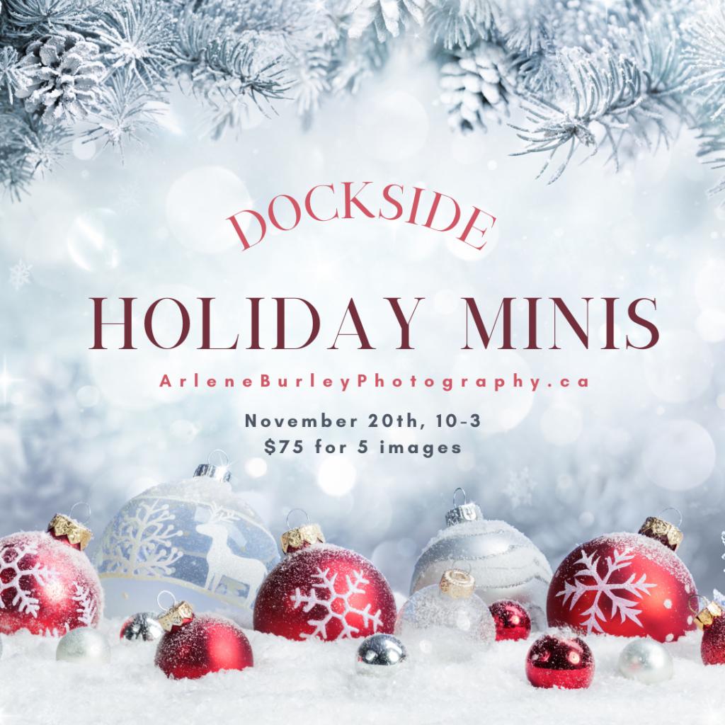 holiday mini session image card